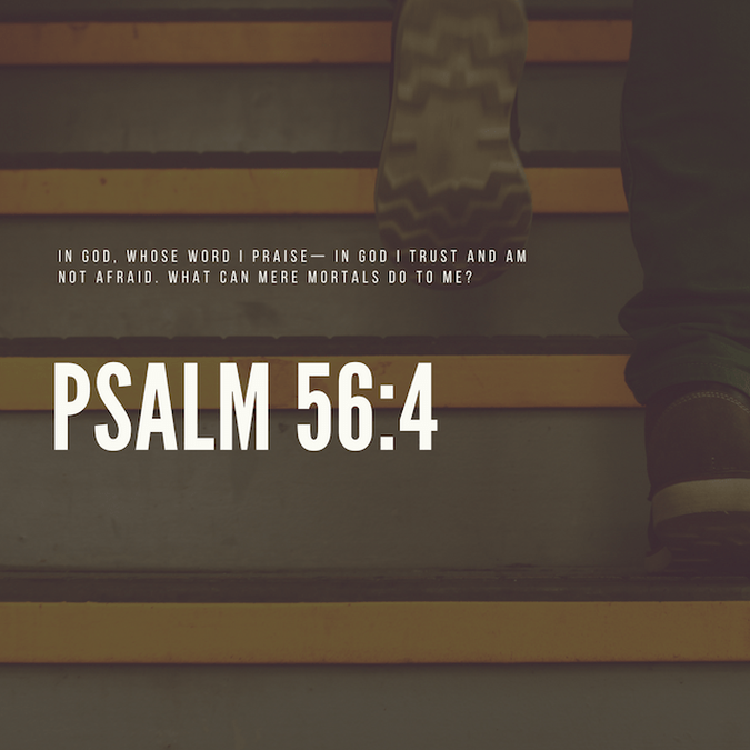 Verse of the Week: Fall Edition image number null