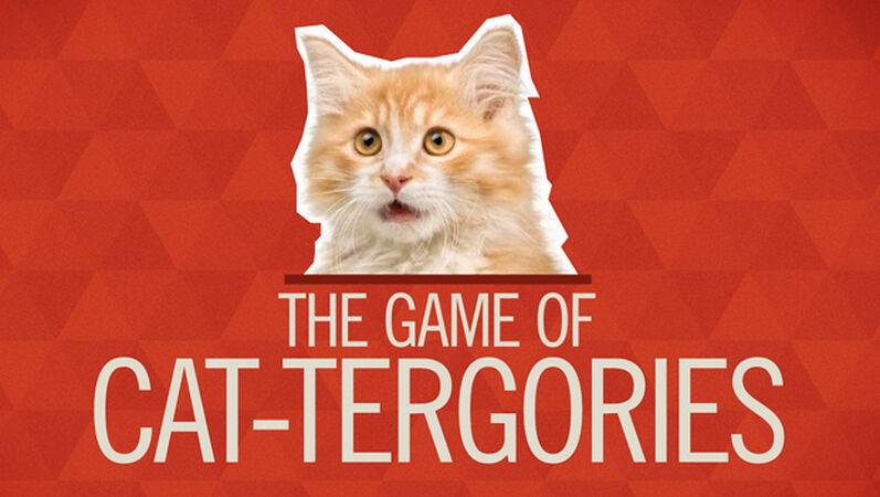CAT-tergories