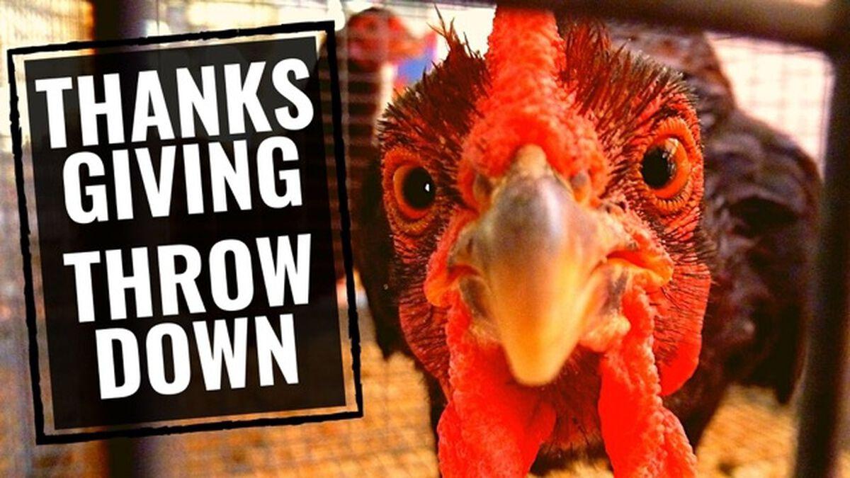 Thanksgiving Throwdown image number null