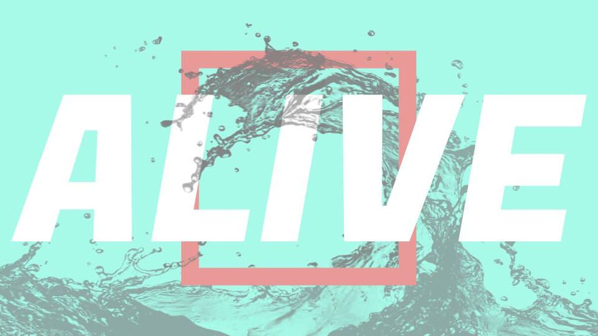 Alive: Living Out Our Relationship with Jesus image number null