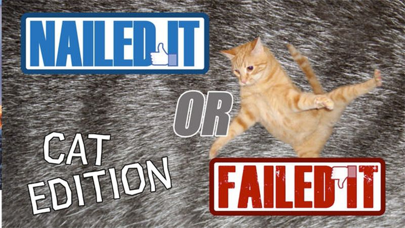 Nailed or Failed: Cat Edition