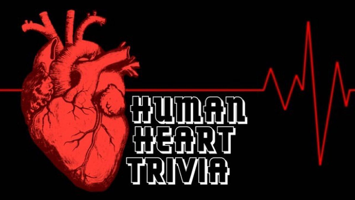 Human Heart Trivia image number null