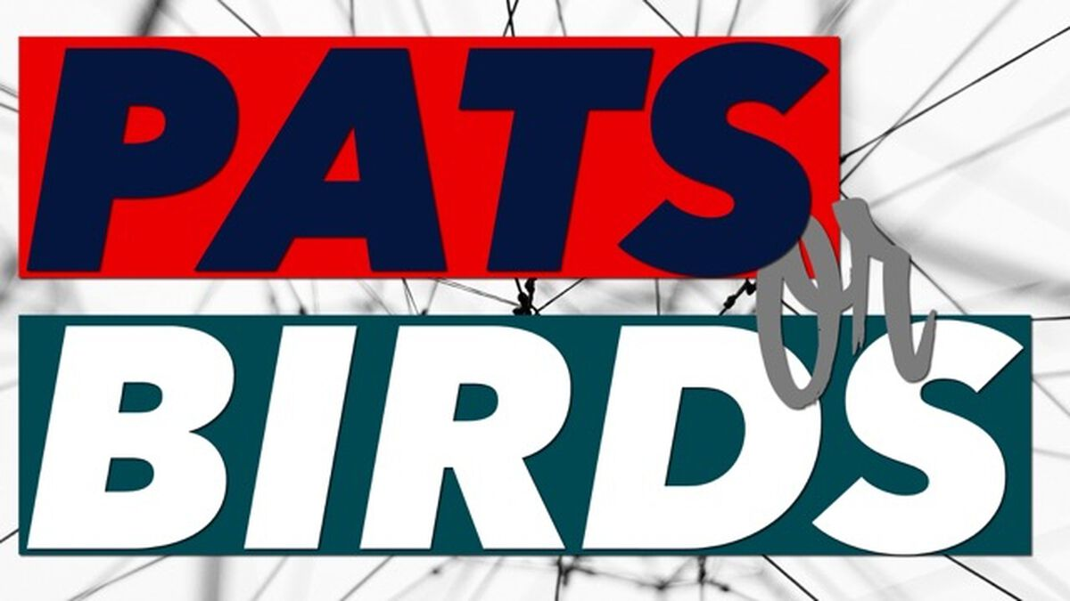 Pats or Birds image number null