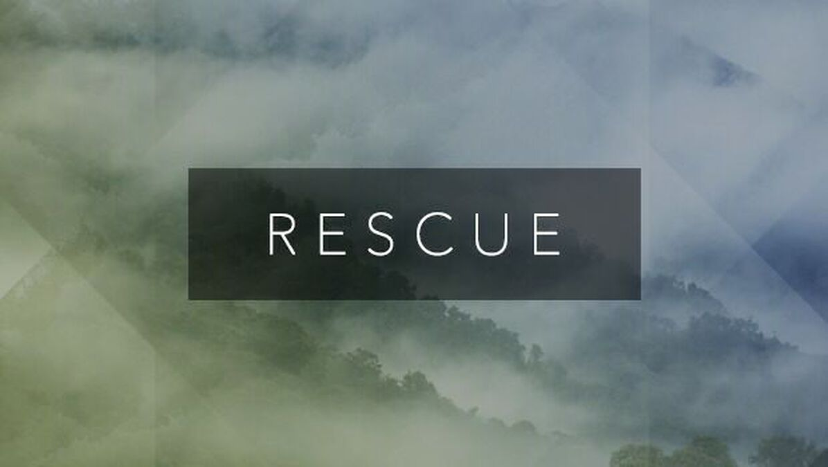 Rescue image number null