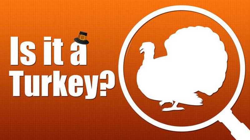 Is it a Turkey?