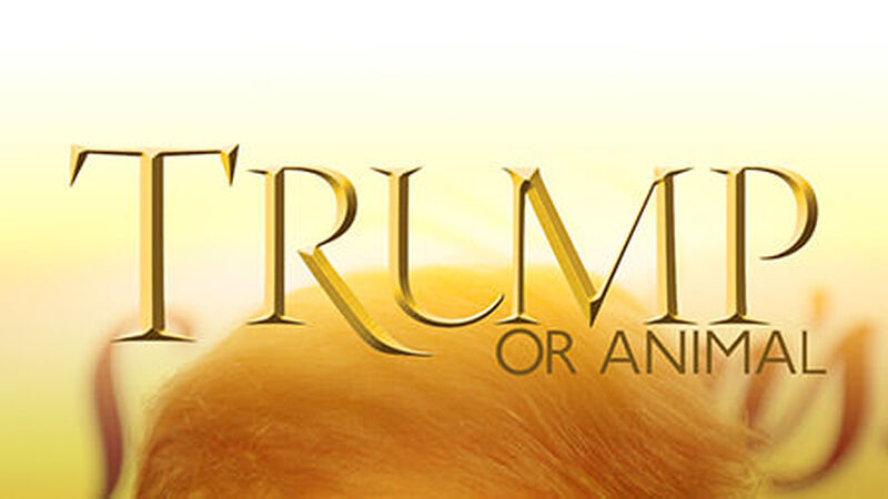 Trump or Animal Game