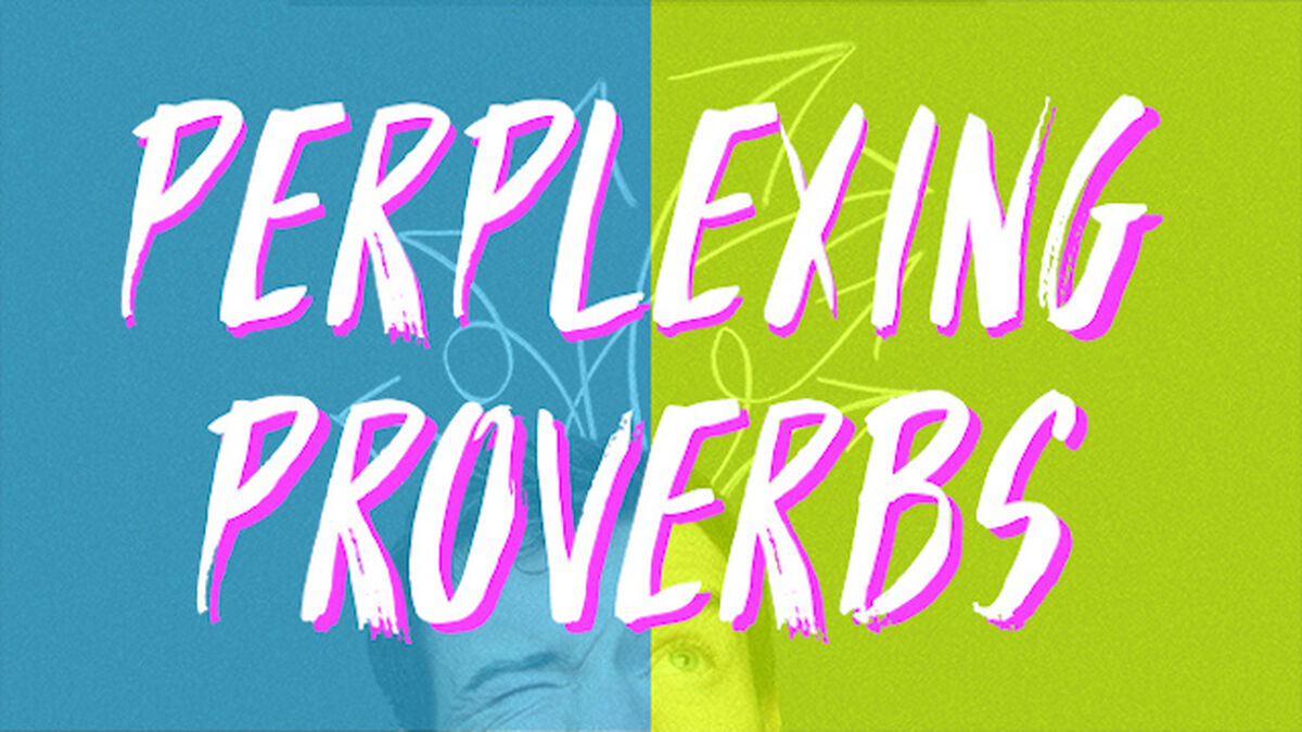 Perplexing Proverbs image number null