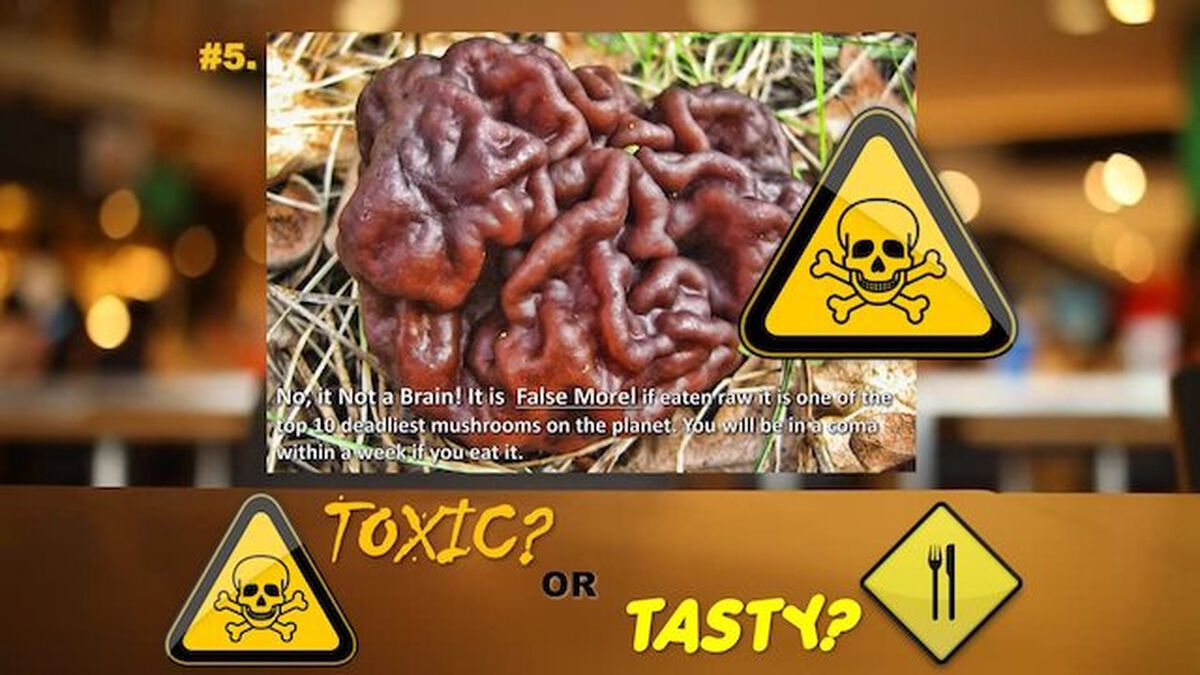 Toxic or Tasty Game image number null