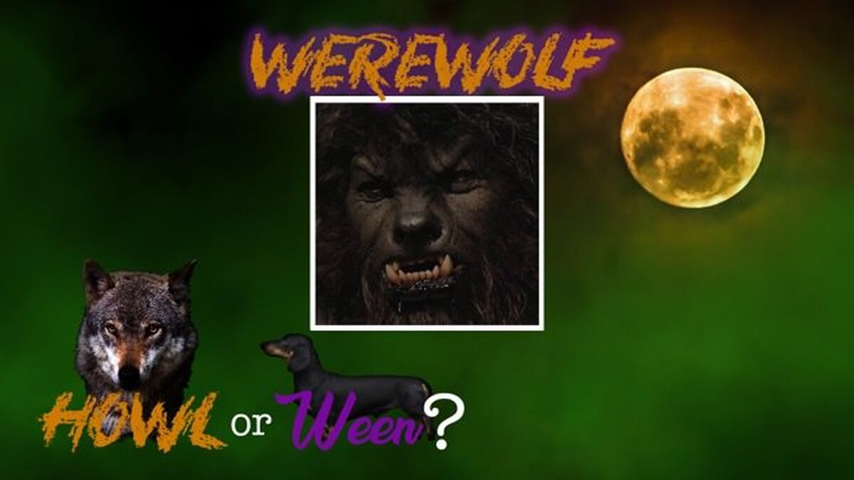 Howl or Ween image number null