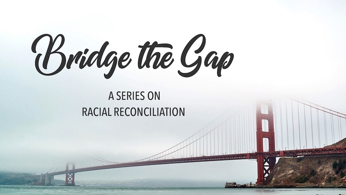 Bridge the Gap: A Series on Racial Reconciliation image number null