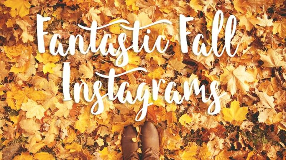 Fantastic Fall Insta Pack image number null