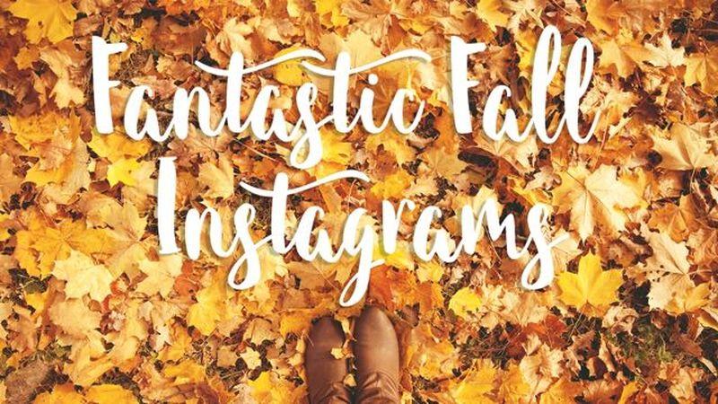 Fantastic Fall Insta Pack