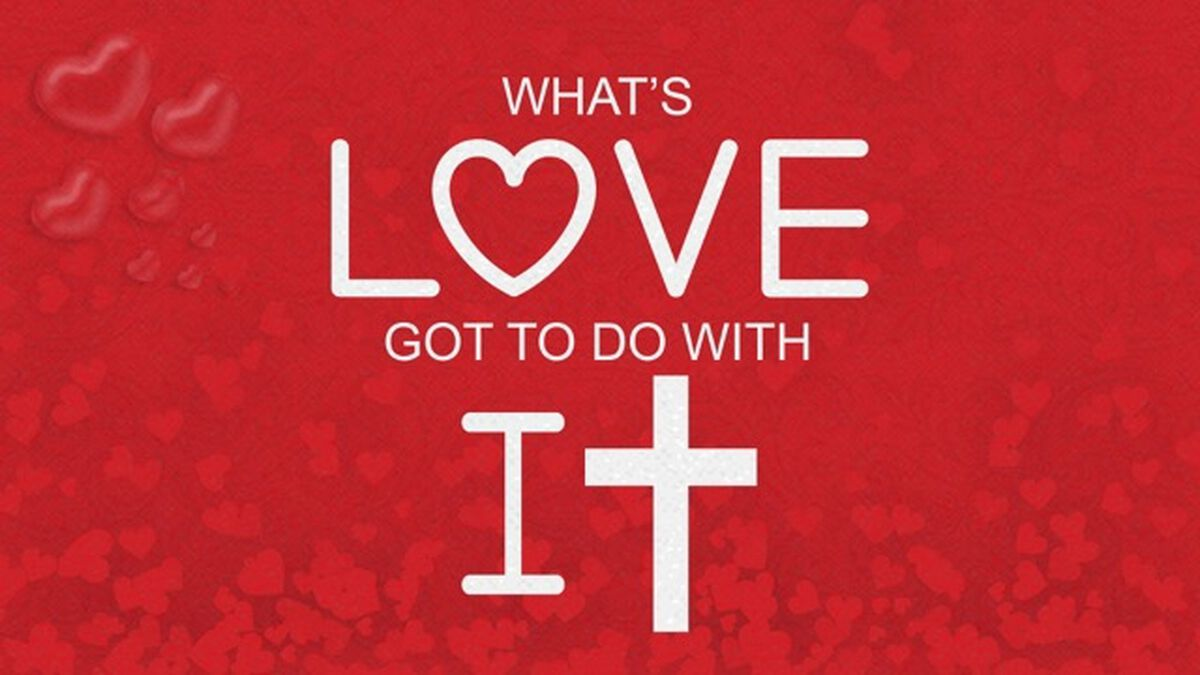 What's Love Got to Do with It? image number null