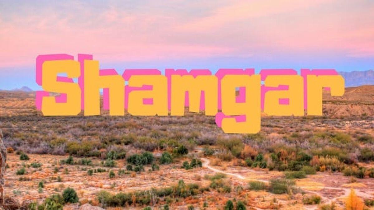 Shamgar image number null
