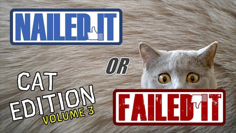 Nailed It or Failed It Cat Edition - Volume 3