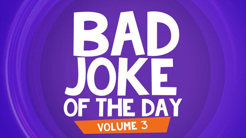 Bad Joke of the Day: Volume 3