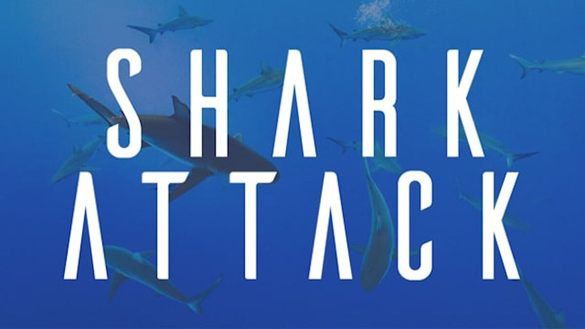 Shark Attack image number null