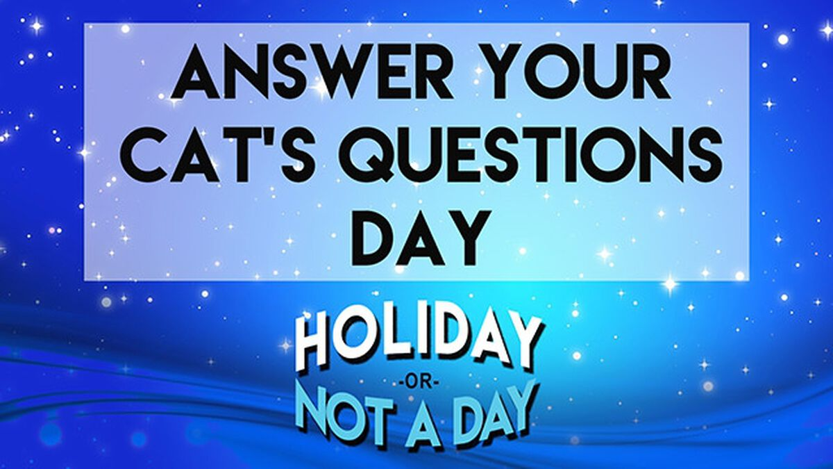 Holiday or Not a Day: January image number null
