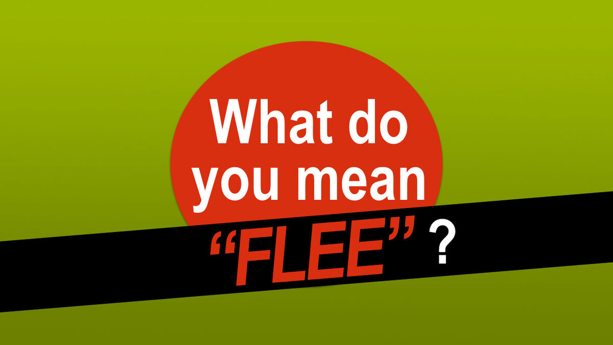 """What do you mean """"Flee""""? image number null"""