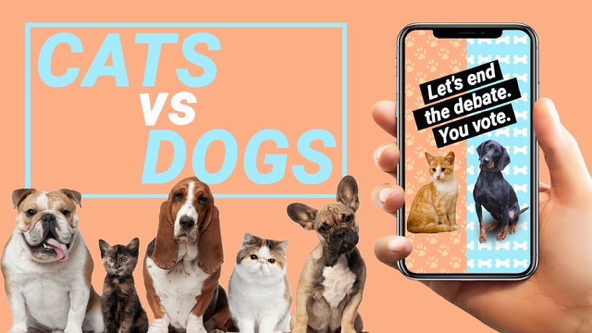 Cats vs Dogs - Story Edition image number null
