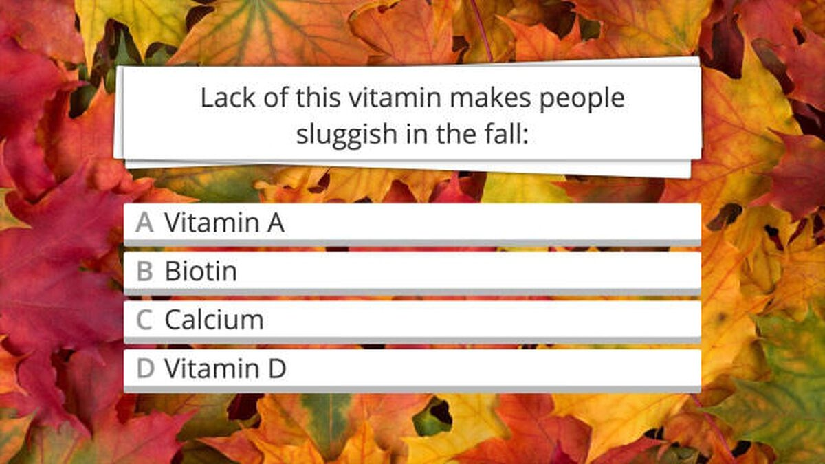 Festive Fall Facts image number null