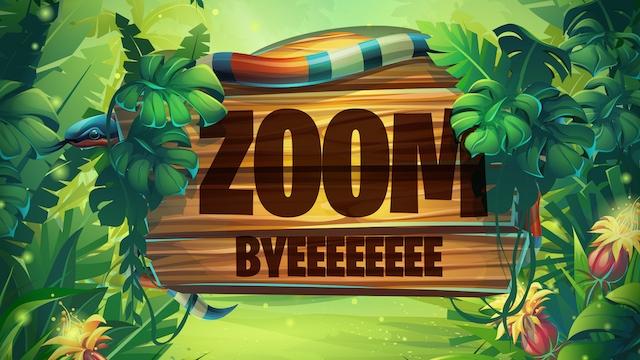 Zoom Byeee